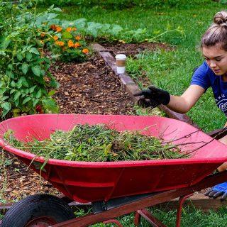 Ash Brokerage Cleans Up Garden at Camp