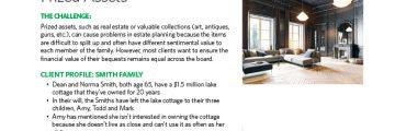 70009-AM-Estate-Equalization-Prized-Assets